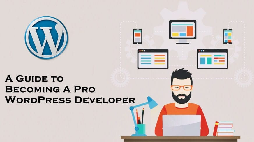 A Brief Guide to Becoming a Pro WordPress Developer