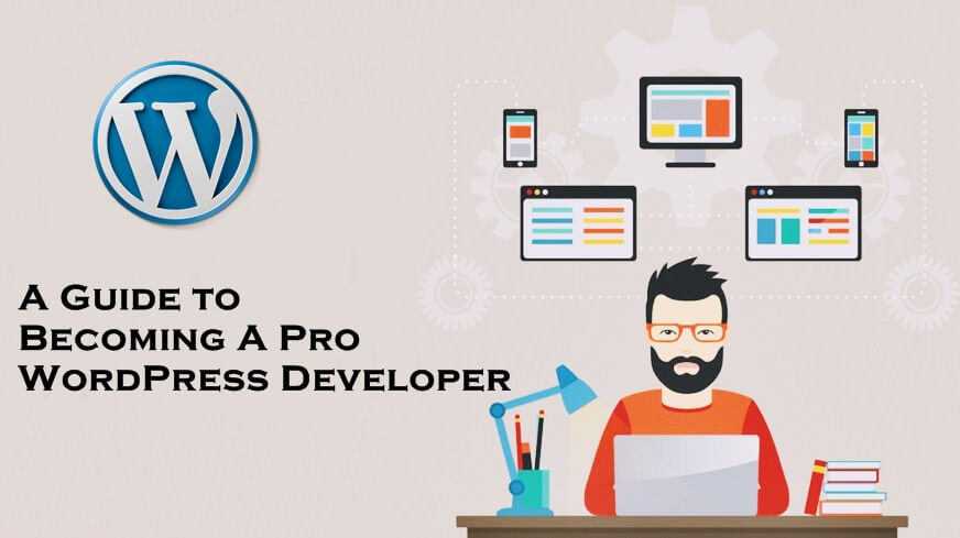 Become a wordpress developer0