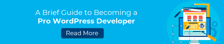 guide-to-becoming-a-pro-wordpress-developer