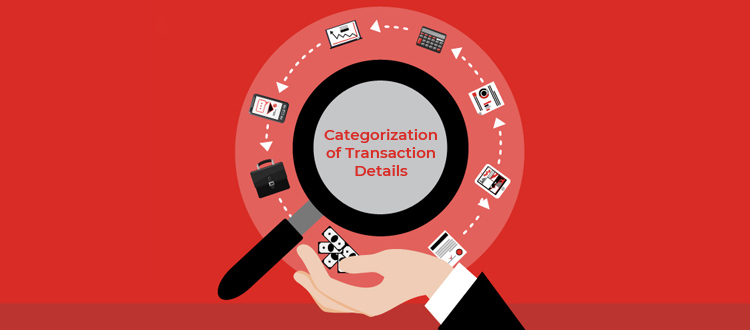 categorization-of-transaction-details
