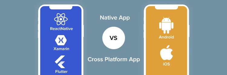 Which-is-Better-Native-vs-Cross